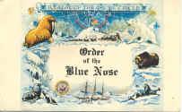 blue nose.jpg (90412 bytes)